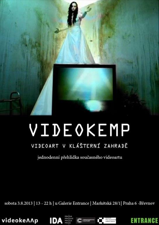Videokemp-2013_small