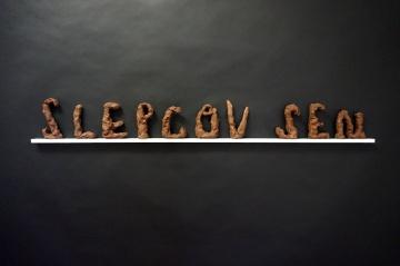 slepcuv-sen_maly